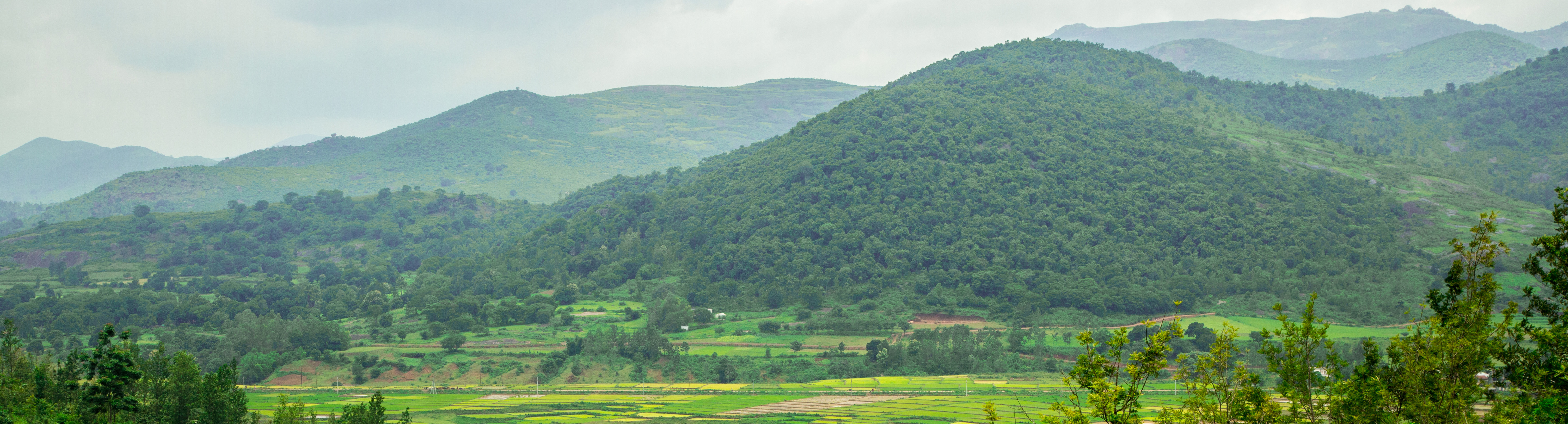 Araku_valley